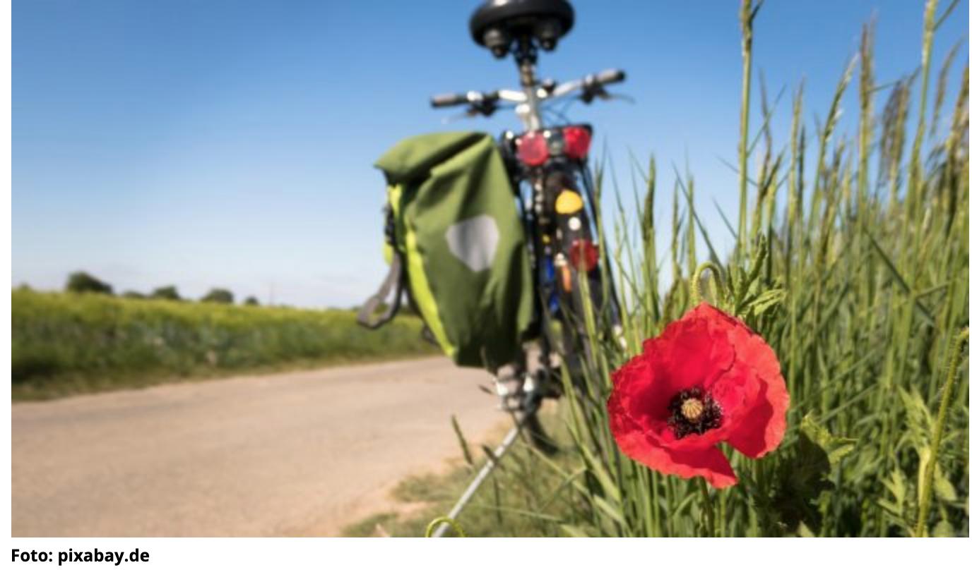 Macht die Fahrradläden auf! Brandbrief der ZEG an die Bundesminister Altmaier und Spahn