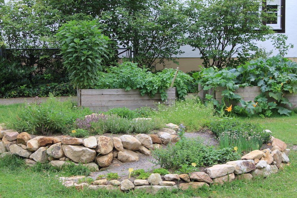 12. + 13. Juni: Tag der Gärten und Parks in Westfalen Lippe:  Lebendige Gärten in Warendorf