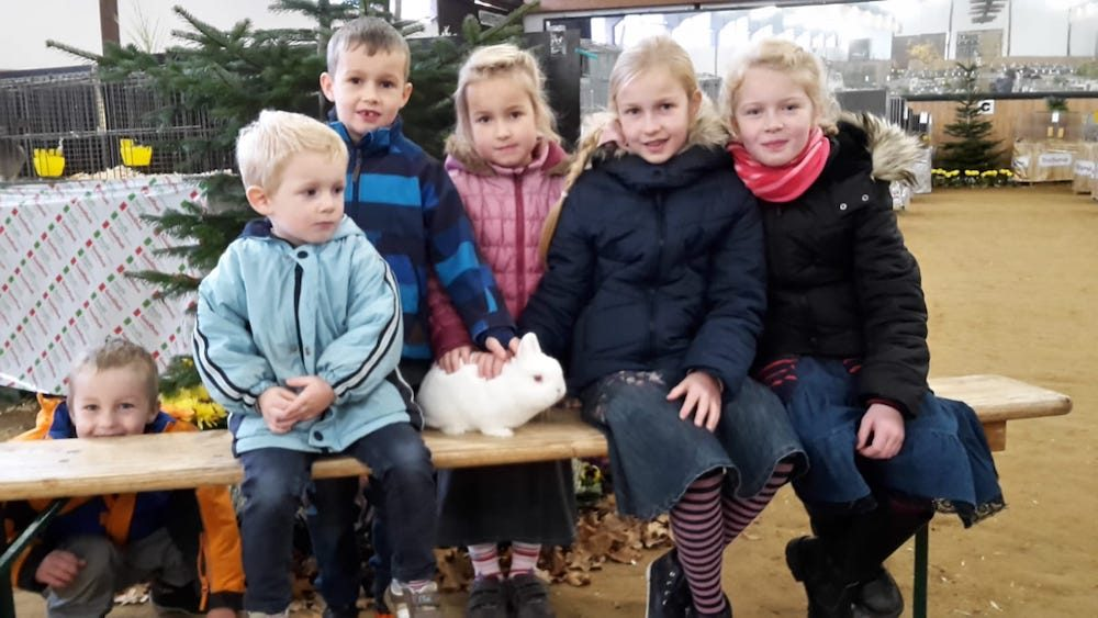 """40. Große """"Freckenhorster Kleintierschau"""" der Rassegeflügel- und Kaninchenzüchter mit angeschlossener Kreisverbandsschau der Rassegeflügelzüchter"""